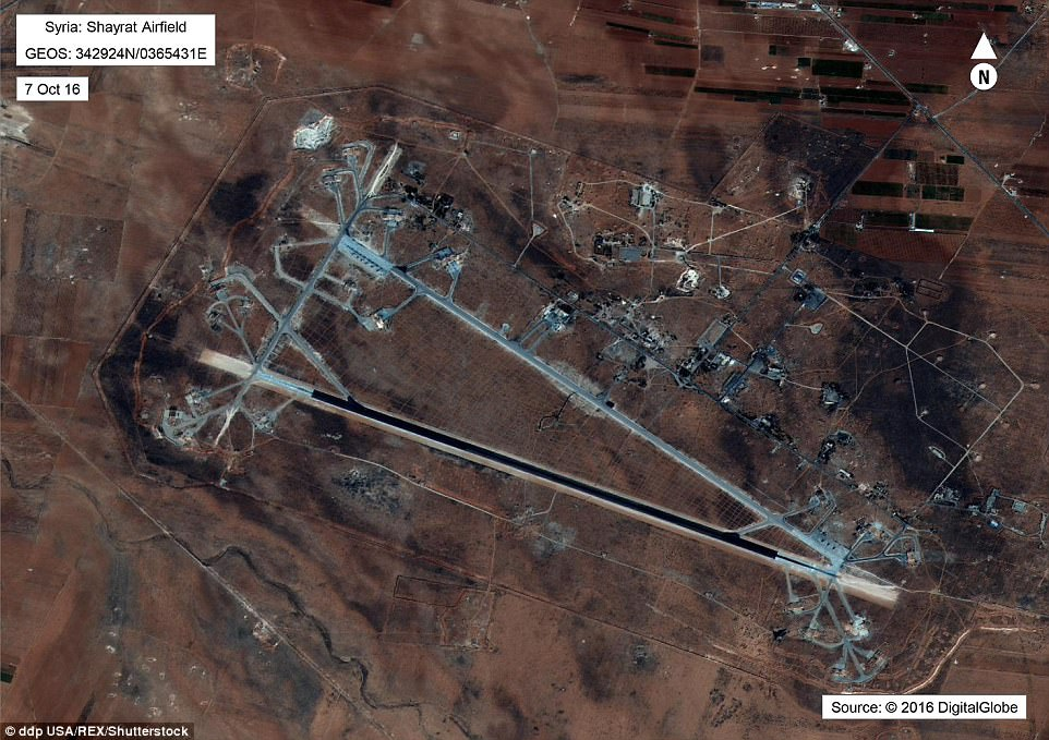 New images from Syrian attack surface